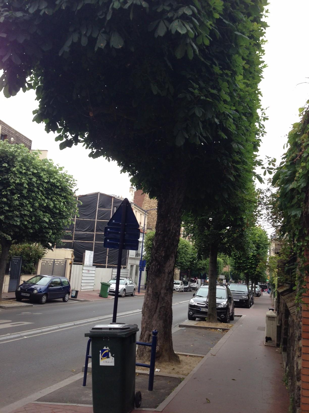 Travaux avenue jean jaur s abattage d arbres de 130 ans for Garage bobigny avenue jean jaures